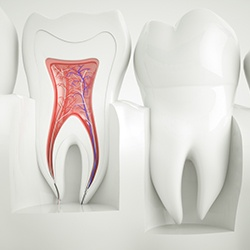 Animation of the inside of tooth